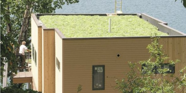 Sig Design Amp Technology Green Roofs How To Install An